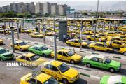 رانندگان تاکسی آموزش امداد و نجات میبینند
