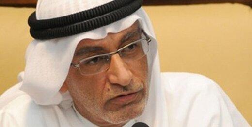 مشاور سابق بنزاید: امارات هرگز وارد نبردی که ارتباطی به آن ندارد، نخواهد شد
