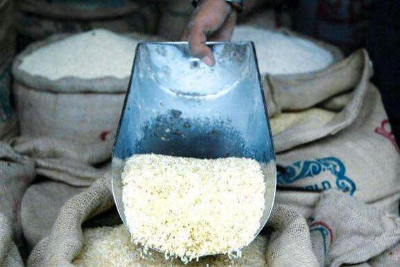 برنج ارزان شد