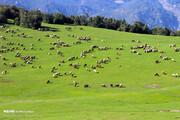تصاویر | منطقهای بکر و دیدنی در دل کوههای اردبیل