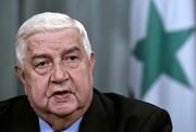 اظهار نظر صریح وزیر خارجه سوریه درباره ابتکار صلح هرمز