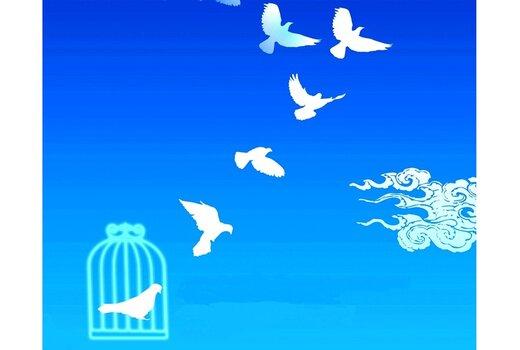آزادسازی ۱۵ زندانی جرایم غیرعمد البرز از محل موقوفات