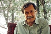 انتقاد از بیتوجهی به اشعار ترکی عمران صلاحی