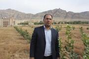 اختصاص ۱۶ هکتار زمین به کاشت تولیدات کشاورزی با پیگیری تیم مدیریتی دانشگاه لرستان