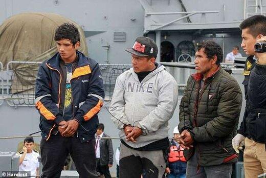 کشف 12.3 میلیون اسب دریایی در پرو
