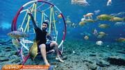 تصاویر | برای عکس گرفتن در زیر آب این برکه باید پول بدهید؛ آن هم دلار!