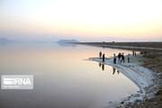 ۴ گیاهی که ۶۸درصد آب دریاچه ارومیه را بلعیدند