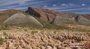 سرزمین دایناسورها در پارک ژوراسیک کشور بولیوی