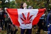 چرا گل در کانادا آزاد شد؟
