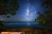 تصاویر | شبهای ستاره باران اورگلیدز؛ رودخانه علف در فلوریدا