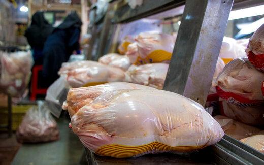 رشد نسبی قیمت مرغ / دولت برنامه ریزی برای شب عید را آغاز کند