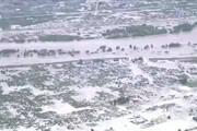فیلم | بلایی که طوفان مرگبار هاگیبیس بر سر ژاپن آورد
