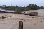 فیلم | بارش شدید باعث سیل در گیلان شد