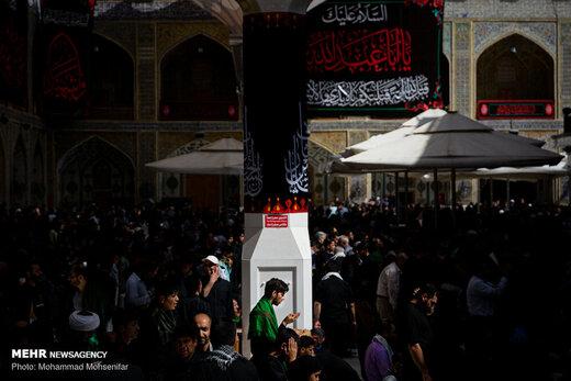 زائران اربعین در حرم امام علی (ع)
