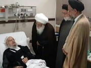 عیادت وزیر اطلاعات از آیتالله مکارم شیرازی+عکس