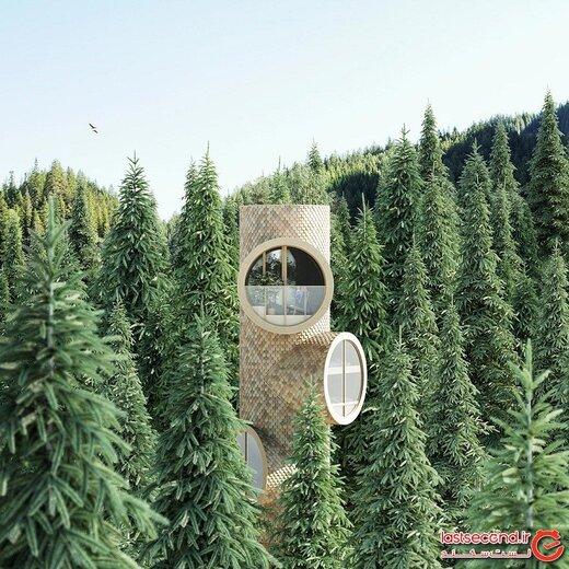 عجیبترین خانه مدرن جهان که بالای درختان جنگل ساخته شده است! +تصاویر