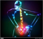 هشدار؛ این دردهای عضلانی و کمردردها نشانه کرونا است