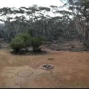 زن استرالیایی روی ماسهها پیامSOS نوشت و نجات پیدا کرد