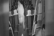 فیلم | ترس راننده اتوبوس از دیدن زن و مردی که در اتوبوس جا ماندند!