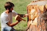 هنرمندی که به درختان جان میبخشد
