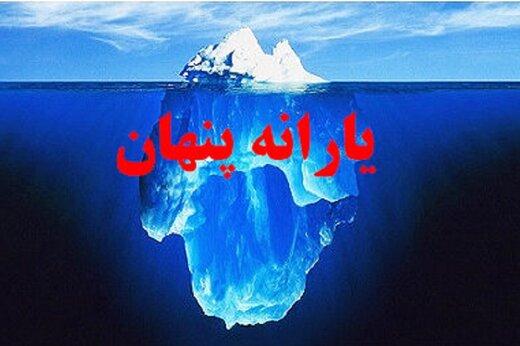 هر ایرانی سالی ۱۶ میلیون تومان یارانه پنهان میگیرد