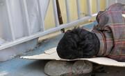 افزایش اسکان اضطراری کارتنخوابها در تهران