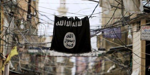 شبهنظامیان کُرد سوریه: سخنگوی داعش کشته شد