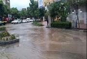 ترافیک سنگین پس از باران, ترافیک