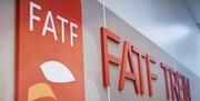 لوایح FATF همچنان بلاتکلیف/میرسلیم: دولت میتواند لایحه جدید بدهد