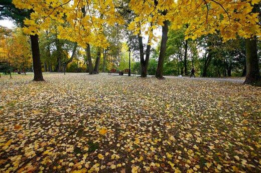 پاییز در بلاروس