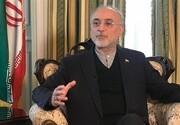 صالحی عنوان کرد:گزینههای پیش روی ایران بازنگری در اجرای پروتکل الحاقی و «انپیتی»