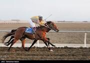 تصاویر | مسابقات قهرمانی کورس اسب دوانی-آققلا