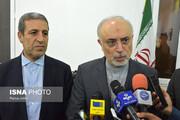 صالحی:خارج از چارچوب برجام عمل نمیکنیم/امیدواریم تا اکتبر آینده تحریمهای تسلیحاتی نیز برداشته شود