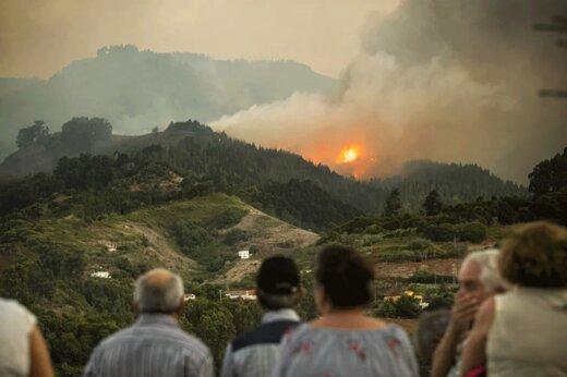 فیلم | آمازون آسیا ماه هاست در آتش میسوزد