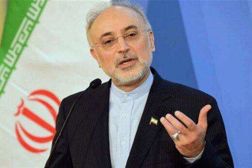 فیلم | صالحی: نیروگاه بوشهر از امنیت و ایمنی کامل برخوردار است