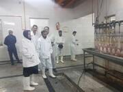 بازدید شبانه مدیرکل دامپزشکی استان از کشتارگاه صنعتی طیور وارنیک الیگودرز