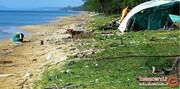 سواحل عجیبی که هیچکس دلش نمیخواهد پایش را در آنها بگذارد! +تصاویر