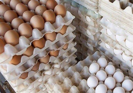 قیمت هر شانه تخم مرغ در تهران ۲۰ هزار تومان شد
