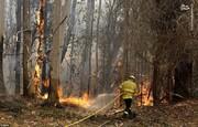 تصاویر | آتشسوزی استرالیا به یک قدمی سیدنی رسید