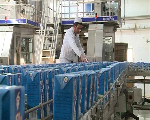 شهرکرد قطب تولید شیراستریلیزه کشور