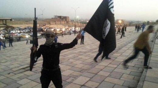 سعودی، پادگان آموزشی برای داعش و القاعده احداث کرد