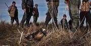 واکنش طیبه سیاوشی به نسلکشی پرندگان مهاجر در مازندران