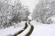 فیلم | بارش برف و باران و زیباییهای آن در نقاط مختلف کشور