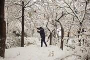 اخطاریه هواشناسی درباره بارش سنگین باران و برف