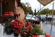 ببینید | نخستین تصاویر بدون خشونتهای بنزینی از شیراز