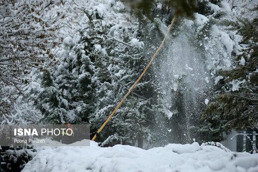 برف پاییزی در همدان