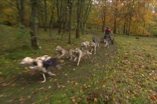 فیلم | مسابقات جهانی سورتمه سواری در گل و لای انگلیس