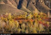 تصاویر | پاییز هزار رنگ در باغشهر هیر