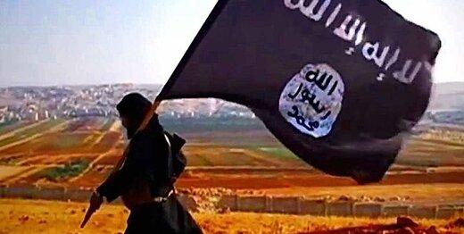 اظهار نظر تازه سازمان اطلاعاتی آمریکا درباره مرگ ابوبکر