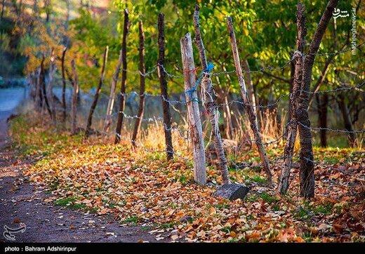 باغشهر هیر در فصل رنگها